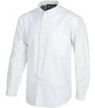 Camisa algodón